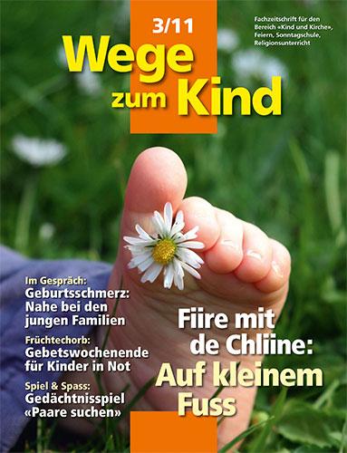 WzK 3/2011: Fiire-Heft: Auf kleinem Fuss